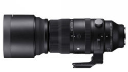 150-600mm_F5-63_DG_DN_OS_Sports_aa09154539